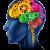 61a2709265351318c86bd5f034ec4128_colorful-brain-clipart_650-761